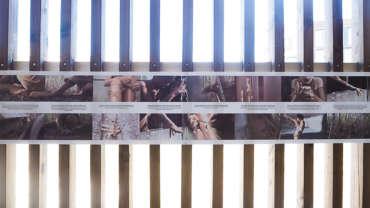 MMTW – Walls/Grenzen/Mauern